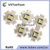 Haute puissance 3W 365nm Puce LED Nichia La Lumière UV