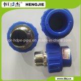 Гнездо мыжской резьбы Hengjie PPR высокого качества