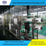 RO het Bronwater van de omgekeerde Osmose zuivert het Drinken Installatie