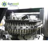 Professionele Fabrikant van Automatisch Roterend Water/Sap blazen-Filling-Afdekt Combiblock