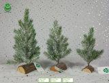 albero di Natale artificiale del PE di 0.2-0.3m per la decorazione - Woodrect & neve S1