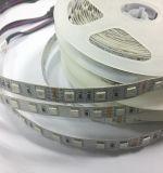 Striscia esterna di alta luminosità LED con potere 17W per la Manica