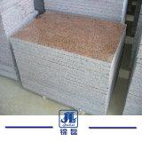 Opgepoetst en Besnoeiing aan Tegel van het Graniet van de Esdoorn van de Grootte de Rode voor Bevloering en Voorzijde