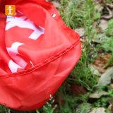 安い卸し売りファブリックポリエステル国旗(TJ-01)