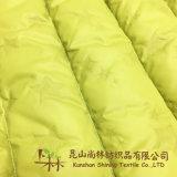 300T taffetas de polyester tissu de nylon mat 40d*40d Downproof revêtement pour les vestes vers le bas