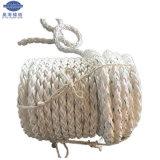 Jiangsu-Lieferanten-Polyamidmultifilament-Liegeplatz-Seil mit Spleißstelle-Augen