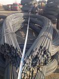 コイルの熱間圧延の高い抗張変形させた鋼鉄Rebar