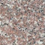 Mattonelle del marmo & del granito