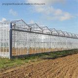 Invernadero de cristal Multi-Span comercial invernaderos de vidrio para la venta