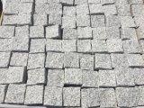 [غ603] شقّ طبيعيّ رماديّ صوان [بف ستون] جلمود أحجار