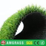 Erba naturale di calcio ed erba sintetica per il giardino