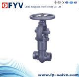 Valvole di globo d'acciaio fucinate (cofano del dispositivo di tenuta a pressione)