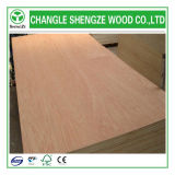 Price razoável Mr/Melamine/WBP/Phenolic Glue Plywood para Decoration