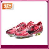 Un calcio esterno di quattro colori calza i caricamenti del sistema di gioco del calcio