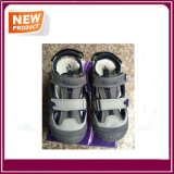 [هيغقوليتي] خف أحذية لأنّ أطفال
