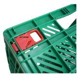 Kit di strumento poco costoso di memoria del cestino variopinto pieghevole di plastica della cassetta portautensili