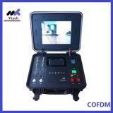 Ricevente senza fili tutta compresa del trasmettitore di integrazione audio video