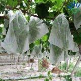Il tessuto/banana non tessuti del coperchio dell'azienda agricola dei pp Spunbond coltiva il sacchetto con i sacchetti non tessuti della frutta del coperchio del tessuto/pianta di 17GSM pp