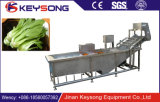 Bulle bulle de la machine à laver/rondelle/ligne de transformation de fruits et légumes