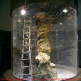 Grande plexiglás transparente/tanque de peixes acrílico