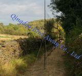 3m*18m Bird mist net 16mm*16mm para pequenos pássaros tocando/bandas para a Investigação Científica