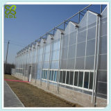 경사지는 디자인을%s 가진 독립 구조로 서있는 작물 녹색 집