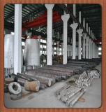 Staaf x2nicomo18-8-5 van het roestvrij staal voor Kleppen