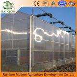Terminar a estufa do túnel do policarbonato para Agricultrual