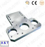 CNC Aangepast Messing/Aluminium/Roestvrij Staal die Pari machinaal bewerken