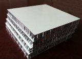 O favo de mel apainela o alumínio (hora P002)