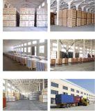 최신 판매 호화스러운 비닐 마루 또는 플라스틱 PVC 마루 또는 비닐 지면 판자