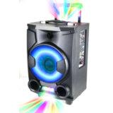 De hete Verkopende Spreker van de PA van 8 Duim met Draadloze Microfoon