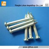 C45鋼鉄白い電流を通された具体的な釘