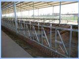 Vitello orizzontale di /Diagonal di dovere di sollevamento che para le barriere dell'alimentazione della rete fissa