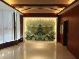 Цветастый водоустойчивый потолок PVC пластмассы & стена PVC панель