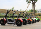 bici eléctrica del interruptor de Harley de la vespa de la vespa 1000W de la rueda eléctrica de Citycoco 2