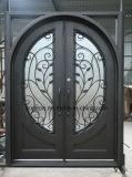 Sicherheits-dekorative bearbeitetes Eisen-Eintrag-Haustüren für Haus