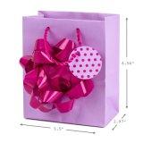 Bolso para las compras, bolsos del regalo, bolsa de papel, bolsa del regalo de papel de Kraft,