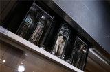 2016 de Beste Verkopende Amerikaanse Keukenkast van de Stijl Welbbom