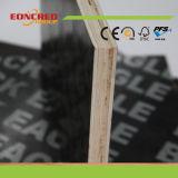 O uso repetido película de mais de 10 vezes enfrentou a madeira compensada