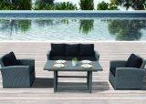 Muebles caseros al aire libre de mimbre del restaurante de la oficina del hotel de Kd del patio del jardín (J563)