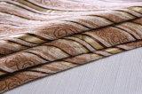 La striscia del Chenille di colore chiaro per il tessuto della presidenza e del sofà