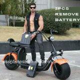 Le vélo de moteur électrique avec 2PCS retirent la batterie
