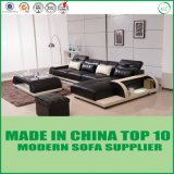 Modernes Hauptsofa-Freizeit-Ecken-Sofa-Set