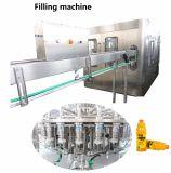 Cadena de producción completa de la bebida del jugo de la pulpa de la nueva tecnología 2017 para la botella del cristal de botellas del animal doméstico