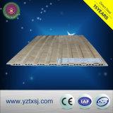 新しく装飾的な良質屋外の防水WPCの壁パネル