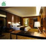 Hotel comercial moderna mobília contemporânea para as férias de Casal