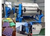 Cadena de producción de la pulpa de la bandeja del huevo pulpa rotatoria que forma la máquina