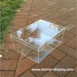 Boîte d'affichage acrylique clair personnalisé pour les chaussures