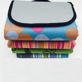 Цветные полосы складной коврик Коврик для пикника Qh-001